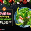Extra 1 Green Salad For Booking